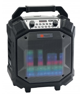 Boombox 60W battery BT speaker with FM Audiophony IPX4